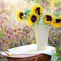 必見!風水的に花を飾る時に役立つ方角別の分類