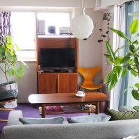 北欧家具とグリーンに囲まれて暮らす